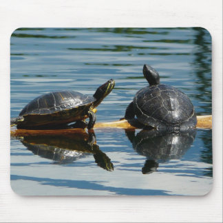Two Turtles at the Turtle Bar Mouse Pad