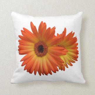 Two Vivid Orange and Yellow Gerbera Daisies Pillows