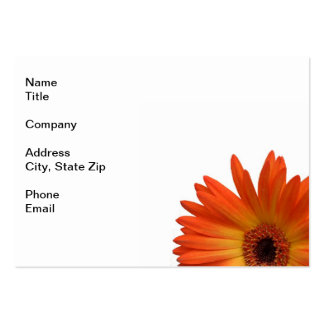 Two Vivid Orange and Yellow Gerbera Daisies Pack Of Chubby Business Cards