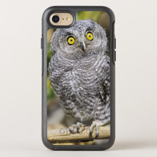 Two-Week Old Baby Screetch-Owl OtterBox Symmetry iPhone 8/7 Case