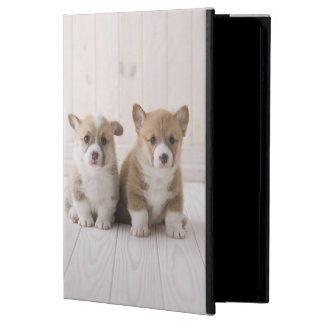Two Welsh Corgi Sitting Case For iPad Air
