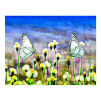 Two White Butterflies in a Yellow Flower Meadow Postcard