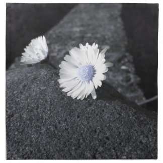 Two white daisies lying on the stone at sunset napkin