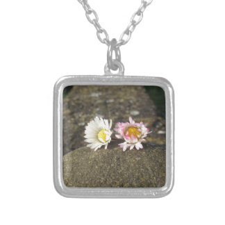 Two white daisies lying on the stone at sunset silver plated necklace