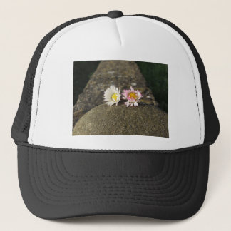 Two white daisies lying on the stone at sunset trucker hat