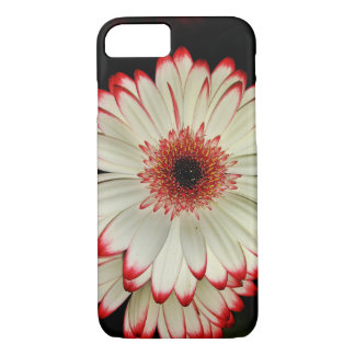 Two White Gerbera Daisies iPhone 8/7 Case