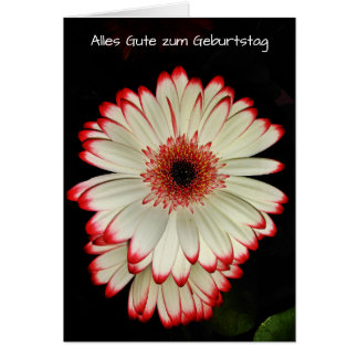 Two White Gerbera Daisy Flowers Geburtstag Card