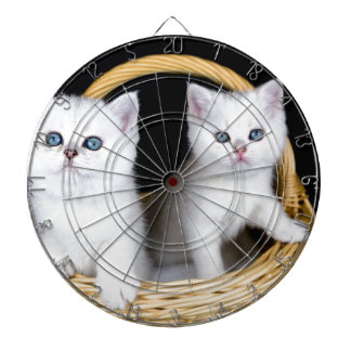 Two white kittens in basket on black background.JP Dartboard