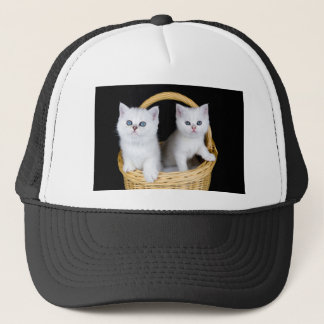 Two white kittens in basket on black background.JP Trucker Hat