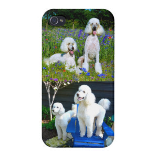 Two White Standard Poodles iPhone 4 Case