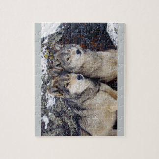 Two Wolves Puzzle