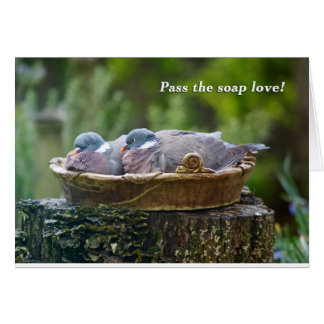 Two wood pigeons sharing a birdbath. card