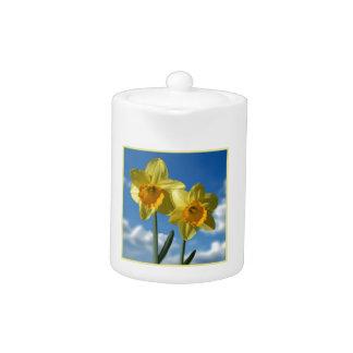 Two yellow Daffodils 2.2