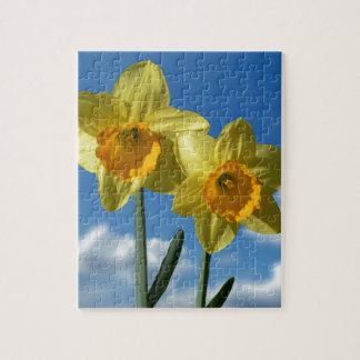 Two yellow Daffodils 2.2 Jigsaw Puzzle