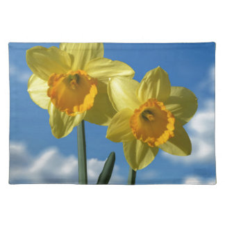 Two yellow Daffodils 2.2 Placemat