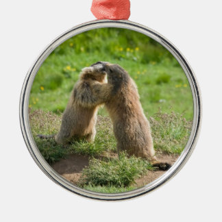 two young marmots metal ornament