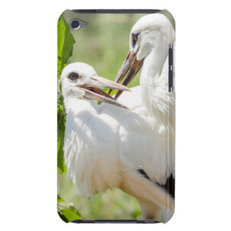 Two Young Storks Birds Animal Photography Barely There iPod Covers