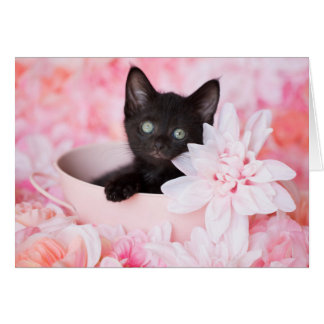 Tye Black Kitten Pink Floral blank notecard