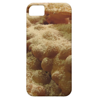 Typical italian carnival sweets case for the iPhone 5