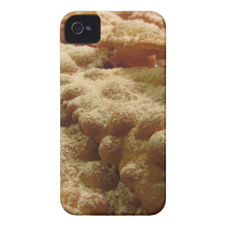 Typical italian carnival sweets iPhone 4 case