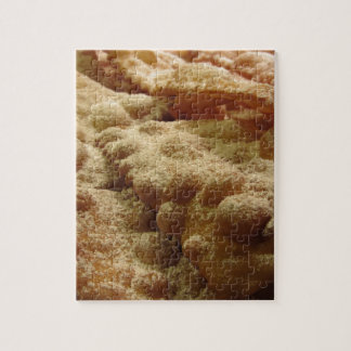 Typical italian carnival sweets jigsaw puzzle