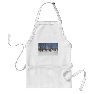 Typical Vermont Town In Winter Standard Apron