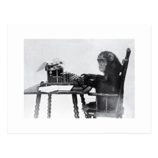 Typing Monkey Postcard
