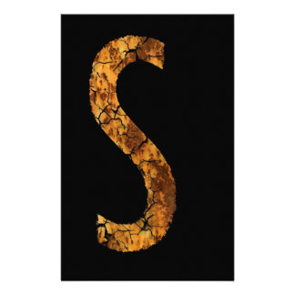 Typo Letter S Customized Stationery