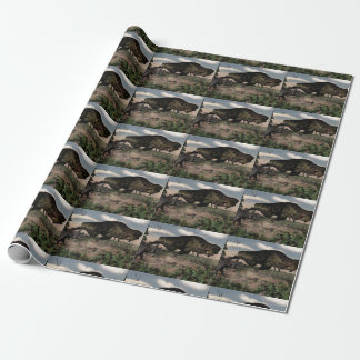 Tyrannosaurus rex roaring at a triceratops wrapping paper
