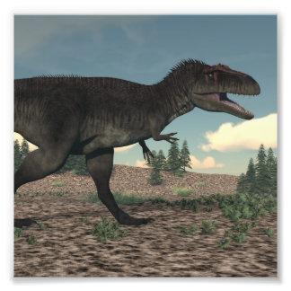 Tyrannotitan Photograph