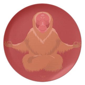 U is for Uakari Plate