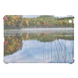 U. P. Michigan Fall Reflections iPad Mini Cover