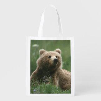 U.S.A., Alaska, Kodiak Two sub-adult brown bears