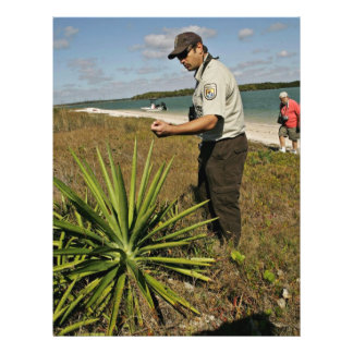 U.S. Fish and Wildlife employee looking at yucca p Flyer