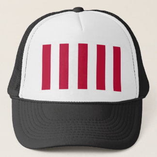 U.S. Sons of Liberty 9 Vertical Strip Flag Trucker Hat