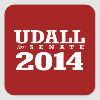 UDALL FOR SENATE 2014 STICKERS