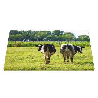 Udder Niewpoints Stretched Canvas Print