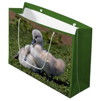Ugly Ducklings Gift Bag