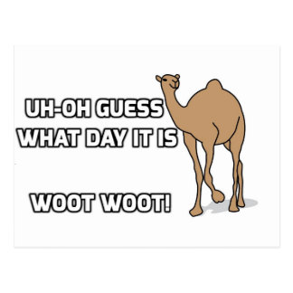 Uh-Oh Guess What Day It Is  - Hump Day Postcard