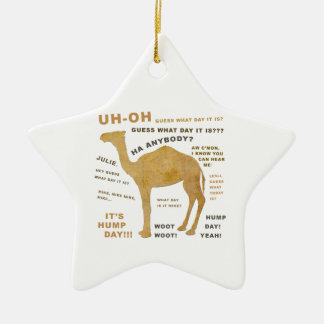 Uh Oh Guess What Day it Is? HUMP DAY!!! WOOT! Ceramic Star Decoration