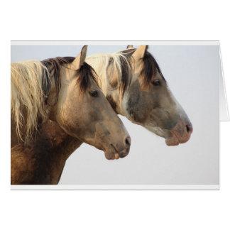 Uinta Desert Wild Horses Card
