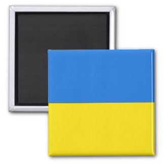 Ukraine Flag Magnet