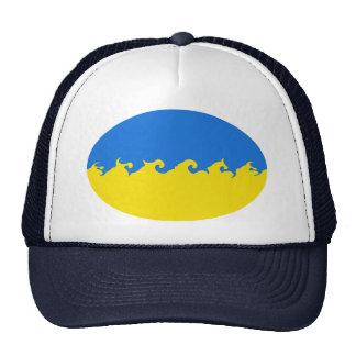 Ukraine Gnarly Flag Hat