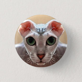 Ukrainian Levkoy Cat Small Badge