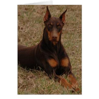 Ultimate Guard dog Card