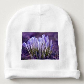 Ultra violet crocuses baby beanie