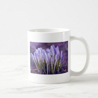 Ultra violet crocuses coffee mug