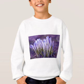Ultra violet crocuses sweatshirt