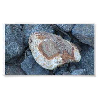 Umatilla Oregon Geology Rocks Earth History Stone Art Photo