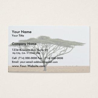 Umbrella Thorn Acacia Tree Business Card